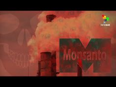 The Empire Files: Part 1 - Monsanto, America's Monster - YouTube - teleSUR English - 10:51