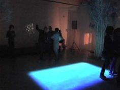Illuminated Forest Multi-Media Installation