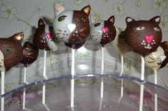 Poezen cakepops