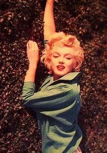 Marilyn Monroe - Marilyn Monroe Photo (15181404) - Fanpop