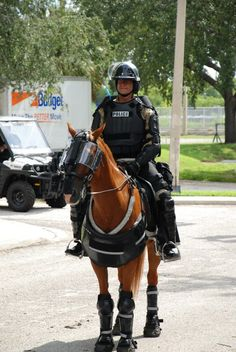 TPD Mounted Police are Ready...For RNC