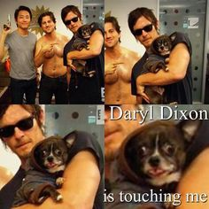 Dog Meets His Favorite Celebrity