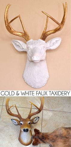 Gold and White Faux Taxidermy