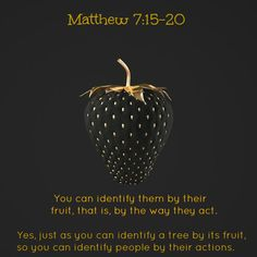 """Beware of false prophets, who come to you in sheep's clothing, but inwardly they are ravenous wolves. You will know them by their fruits ♥ Matthew - All so-called self-claimed """"prophets of God"""" is false as their entire religion is false! Bible Verses Quotes, Bible Scriptures, Biblical Quotes, Religious Quotes, Spiritual Quotes, Just Keep Walking, Into The Fire, Best Fruits, Lord And Savior"""