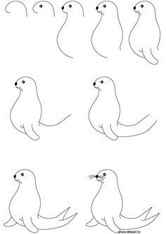 Afbeeldingsresultaat voor zeehond tekenen in stappen