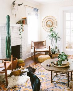 Bohemian interiors - a living room with cacti and a wild west feel