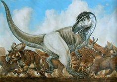 Daspletosaurus attacks!