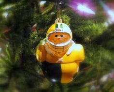 http://pinterest.com/pin/create/button/?url=http://fineartamerica.com/featured/packer-christmas-ornament-kay-novy.html=http://fineartamerica.com/images-medium-5/packer-christmas-ornament-kay-novy.jpg  http://kay-novy.artistwebsites.com/