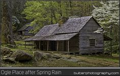 "Ogle Place after Spring Rain.  Roaring Fork Motor Trail, Great Smoky Mountains. This 19th century ""saddlebag"" cabin with two living areas that share one chimney is found just south of Gatlinburg Tennessee. The cabin was built by Noah ""Bud"" Ogle over five years spanning the late 1880's and early 1890's.  I arrived just after a morning rainstorm to capture this scene.  Prints @ BuiterPhotography.com"