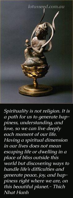 Thing Naht Han Quote   Spirituality   Life