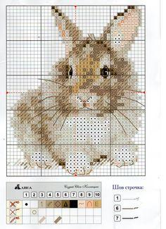 Borduupatroon - konijn