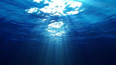 Windows, ocean, underwater, deep