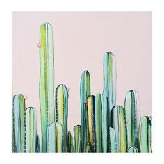 'Cactus Field' original oil painting on wood panel to be framed in Tasmanian Oak 25 x 25 cm including frame. #oilpainting #cactus #succulents #plantsonpink #painting #art #original #landscape #landscapepainting #nature #cactusart #plants