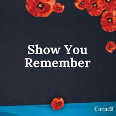 November 11 is Remembrance Day in Canada. We observe two minutes of silence at a.m, to honour those who served our country in time of war. They were all heroes. Remembrance Day Poppy, I Am Canadian, All Hero, Lest We Forget, Veterans Day, Great Quotes, Canada, Country, Poppies