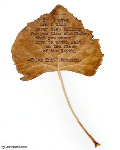 The leaves and I willnever stop fallingfor you like snowflakesthat you neverhave to watch melton the floorof the Earth.-Tyler Knott Gregson-