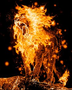 ~Lion's Roar~   Fire Manipulation