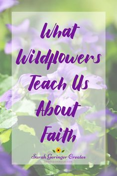 It's easy to get caught up in the pressures of life and forget how precious we are to God. But wildflowers hold simple lessons to encourage us. Spiritual Encouragement, Christian Encouragement, Women Of Faith, Faith In God, Christian Living, Christian Faith, Christian Meditation, Strong Faith, Have Faith In Yourself