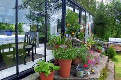 During summer I place a lot of pots and containers with plants on the stairs of my greenhouse
