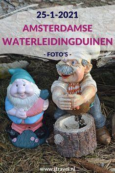 Ik maakte een wandeling in de Amsterdamse Waterleidingduinen. Dit keer liep ik vanaf ingang De Zilk naar het kabouterdorp. Mijn foto's zie je hier. Kijk je mee? #awd #damhert #dezilk #kabouterdorp #kabouters #wandelen #hiken #natuur #jtravel #jtravelblog #fotos
