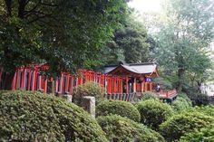 Nezu Shrine: Tokyo's Most Underrated Shrine – Japan Travel Guide -JW Web Magazine Cool Places To Visit, Great Places, Tokyo With Kids, Azalea Bush, Ueno Park, Hillside Garden, Wooden Terrace, Japan Travel Guide, Flower Festival