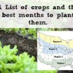 A list of crops and what seasons to plant them in. There is a great Regional Map too to help you.