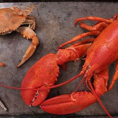 How to Crack Crabs and Lobsters on Food52