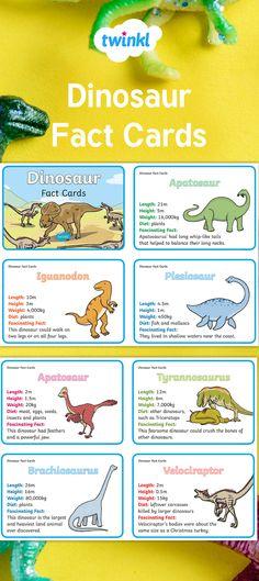 Dinosaur Fact Cards.