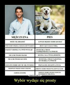 Man vs Dog - choice is simple: O choose dog cuz it is loyal and thinks that I am beautiful *w* Wtf Funny, Funny Memes, Jokes, Best Memes, Weekend Humor, Reaction Pictures, I Love Dogs, Funny Photos, Laugh Out Loud