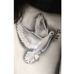 Dove Tattoo, Symbol of Peace