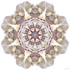 . Kaleidoscope Images, Fractals, Design Art, Digital Art, Pretty, Daily Inspiration, Patterns, Mandalas, Block Prints