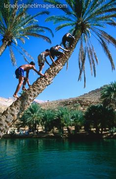 Swimming time in Oman!