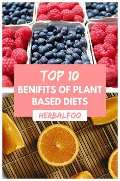 Top 10 benifits of plant based diet. Plant Based Diet, Benefit, Raspberry, Healthy Recipes, Tea, Fruit, Breakfast, Plants, Food