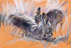 Steve Morvell Australian Wildlife Artist Contentment Mother Kangaroo & joey  . Pastel painting drawing