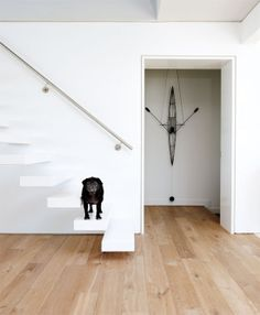 staircase in white loft.jpg