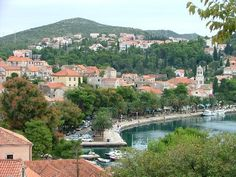 Cavtat, Croatia. such a beautiful place.