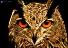 Illustration animal fractal - David Labat