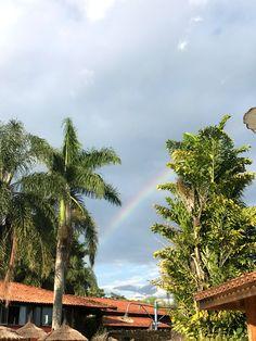 Rainbow, Rainbows, Rain Bow