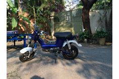 Epic Metallic Blue Honda Chaly **GREAT DEAL**