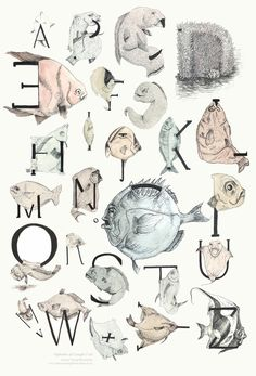 An Alphabet of Caught Fish - Joanne Young | Design.org