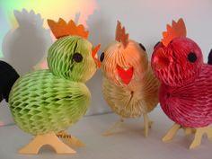 Honeycomb chicks
