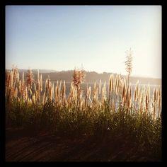 Big Lagoon. Humboldt Lagoons California State Park