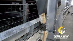 Henan Jinmuren Machinery Equipment Co. Products, Gadget