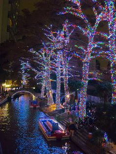 San Antonio Riverwalk at Christmas. First time I had ever seen trees wrapped in lights--beautiful. San Antonio Riverwalk, Viaje A Texas, Dream Vacations, Vacation Spots, Texas Vacations, Oh The Places You'll Go, Places To Travel, Christmas Lights, Merry Christmas