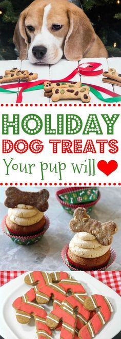 These Christmas dog treat recipes are SO EASY!! Would be such a great DIY homemade gift for my fur babies! My puppy will love these holiday dog treat ideas! Definitely pinning!