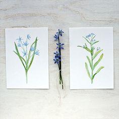 Blue Botanical Watercolor Prints