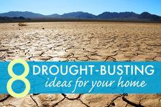 drought, california, water efficiency, water saving, epa, environmental protection agency, certification, watersense, water sense
