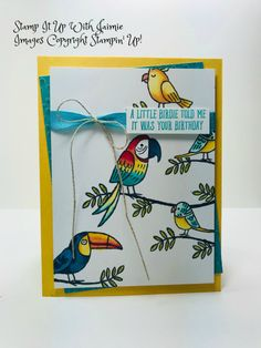 Stampin' Up! Bird Banter Birthday – Stamp It Up with Jaimie