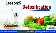 Detoxification of body needs further explanation and attention to everyone who has some health problems or wants to avoid specific symptoms and more severe complications.