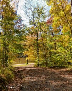 The road to the lake in autumn at Prairie Creek Park in Vigo County Indiana captured by Wandering Ways Photography 2016