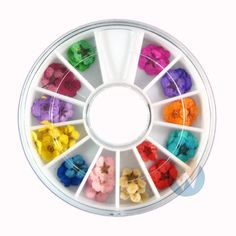 Nail Art Accessories Real Dry Dried Flowers 12 Colors Bundle Set in Wheel - Ready to Use by Winstonia >>> Click image to review more details.